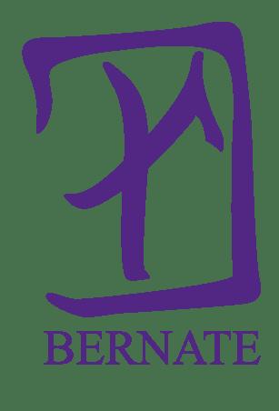 Estudio Bernate Logo